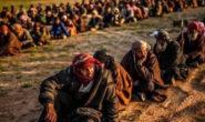 چارهنووسی داعشه زیندانی كراوهكان بهرهو كوێ…  ئهحمهد كامهران
