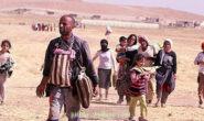 ژن و منداڵه ئێزیدیهكانی قوربانی داعش … ڕهسوڵ بۆسكێنی